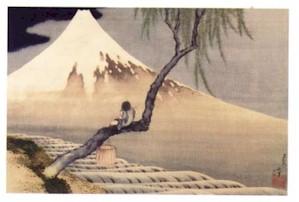 Ragazzo sul monte Fuji