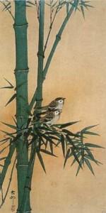 Uccelli tra i bambù